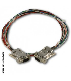 Câble SkyView 2m