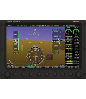 "SkyView SE D900/B 10"""